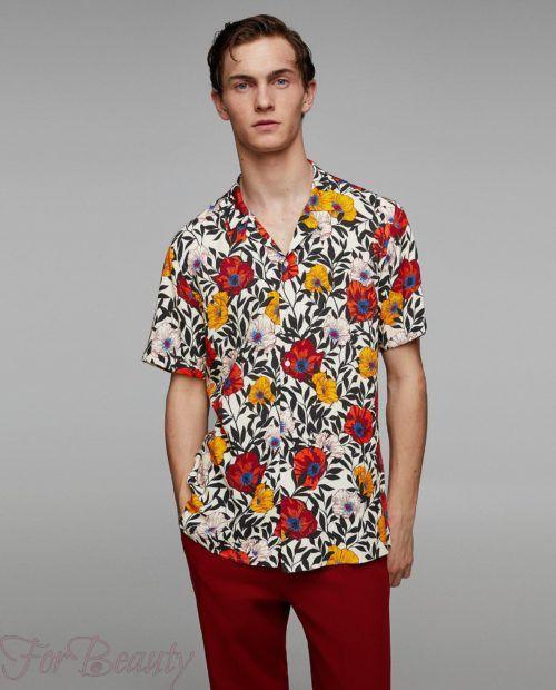 модные мужские рубашки 2018: спринтом розы