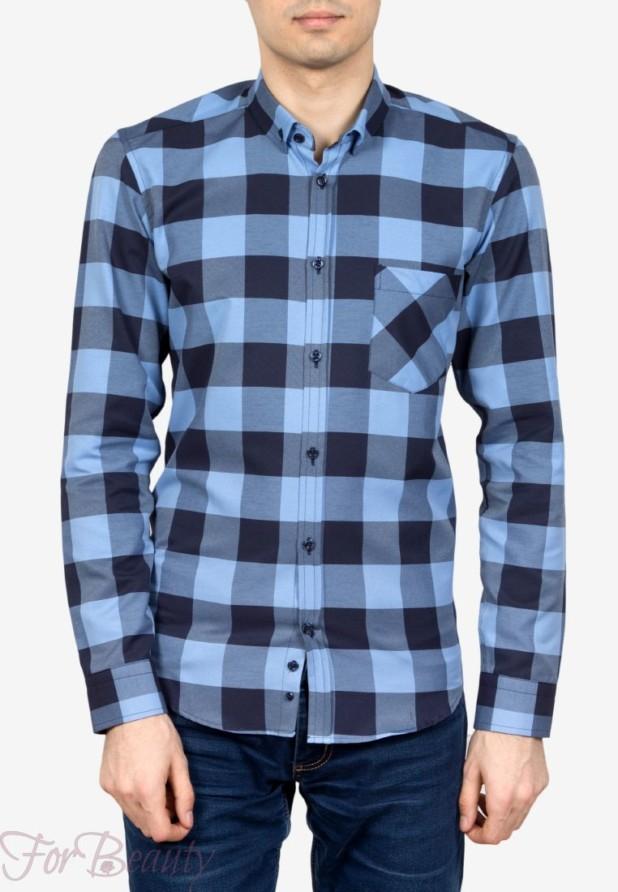 мужские рубашки мода 2018: в клетку голубая